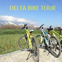 Delta Bike tour